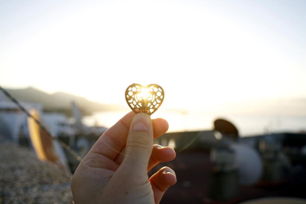 Heart. Photo: Sanjin Đumišić.