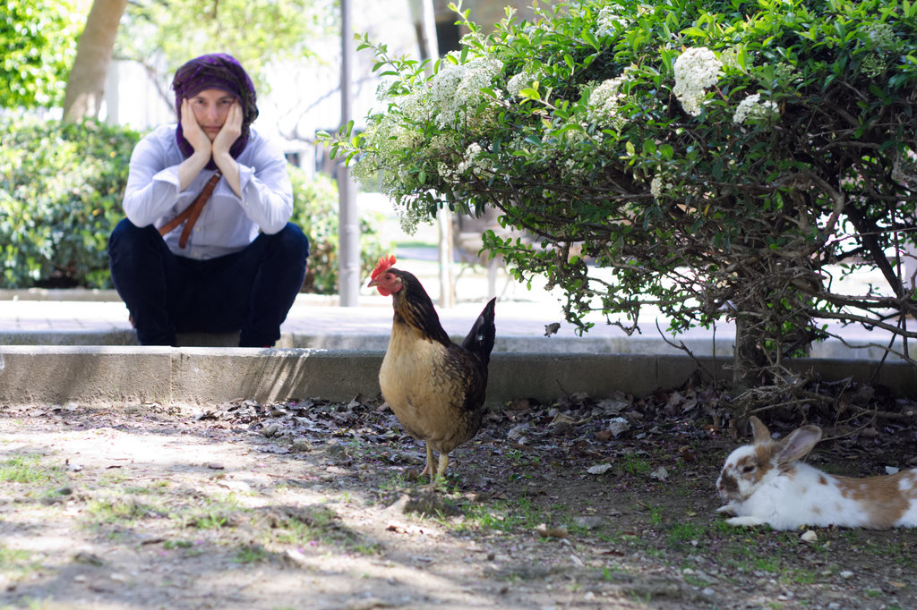 Sanjin, hen and rabbit. Photo: Lisa Sinclair.