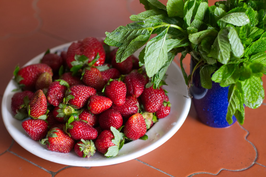 Strawberries and mint leaves in Nerja. Photo: Sanjin Đumišić.