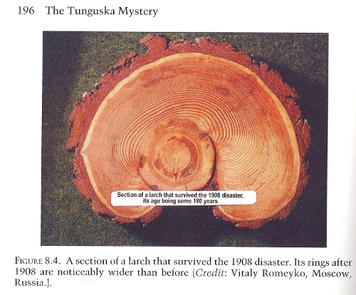 Odd biology in Tunguska. Image from Vladimir Rubtsov's book.