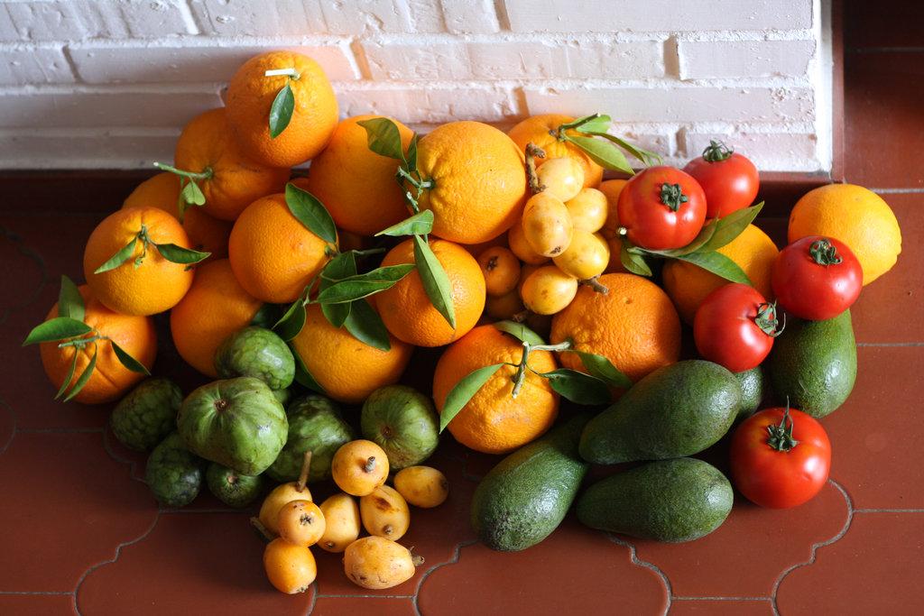 Early April fruits in Nerja. Photo: Sanjin Đumišić.