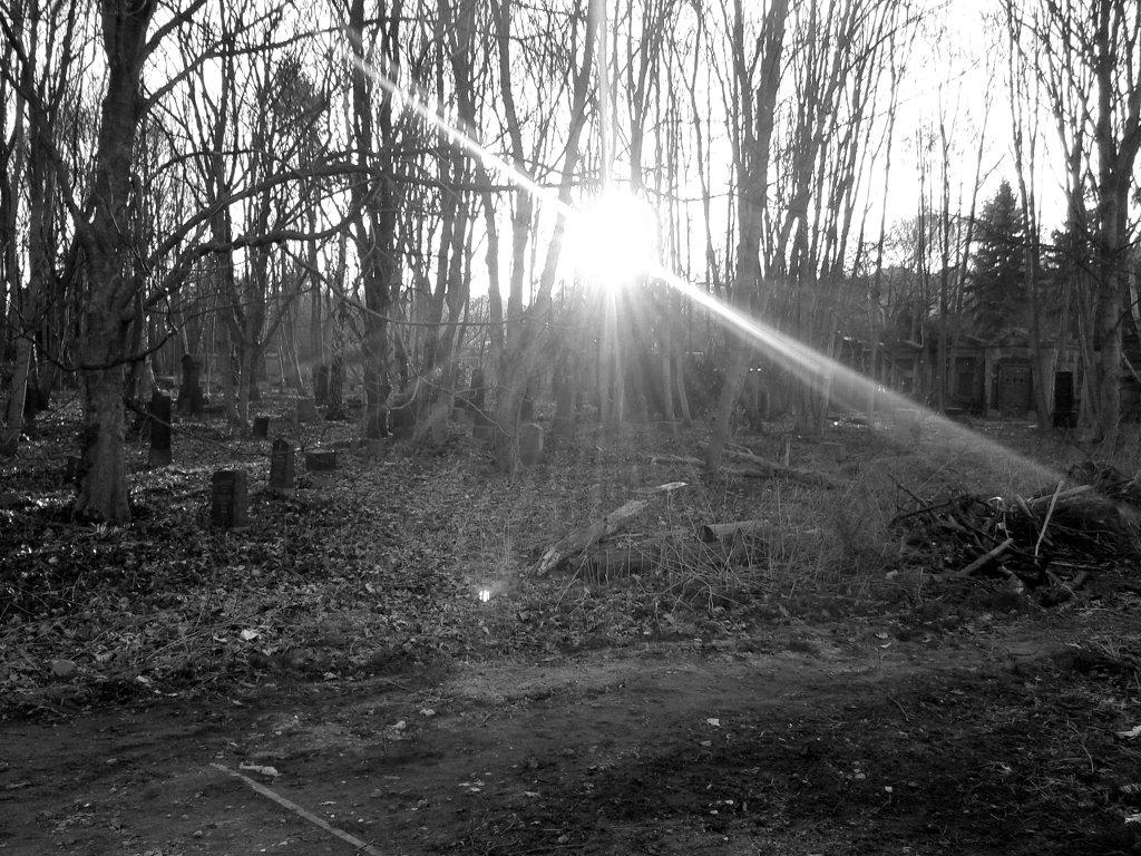 Even graveyards fall apart. Photo: Sanjin Đumišić.