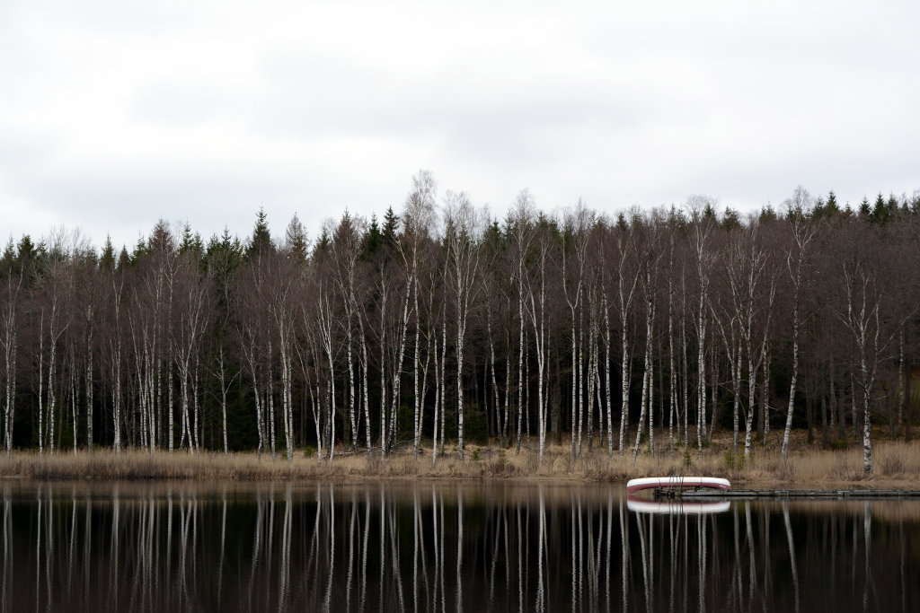 Calm lake, in the forest of Götaland, Sweden. Photo: Sanjin Đumišić.