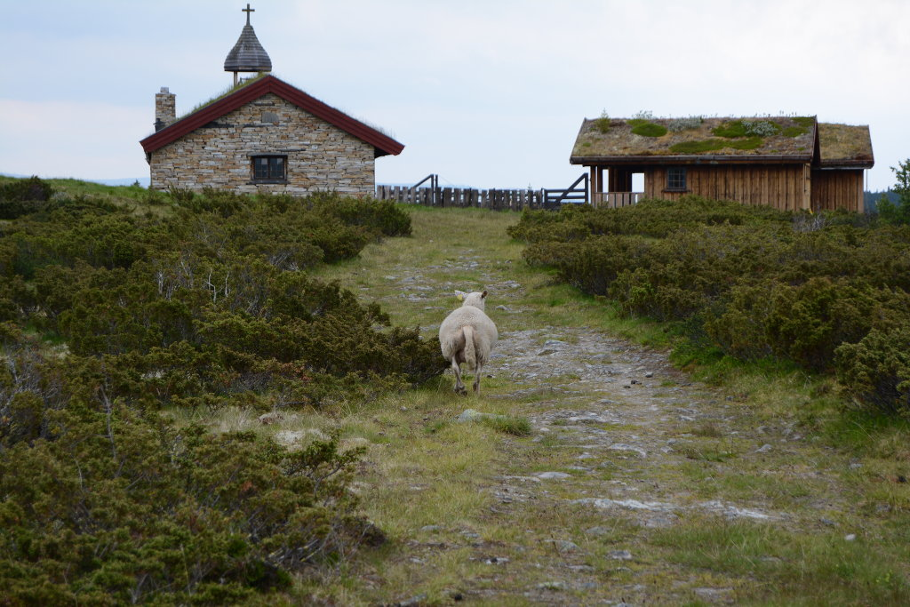 Small Church in Ringebu Norway. Photo: Sanjin Đumišić.