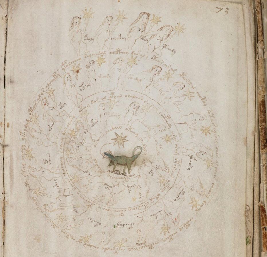 Voynich Manuscript.