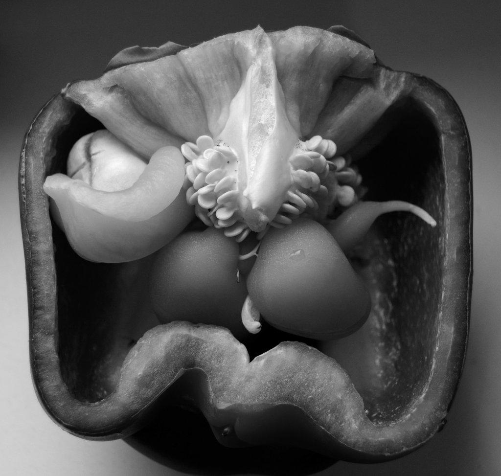 Pepper within pepper. Photo: Sanjin Đumišić.
