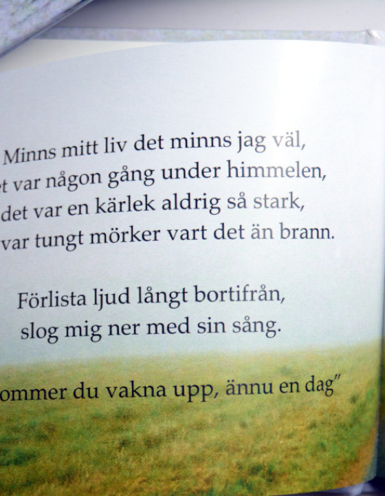 'Ord om bokstav' Poetry Book