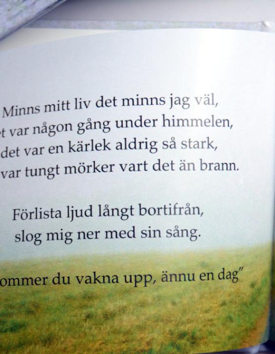 'Ord om bokstav' Poetry Book