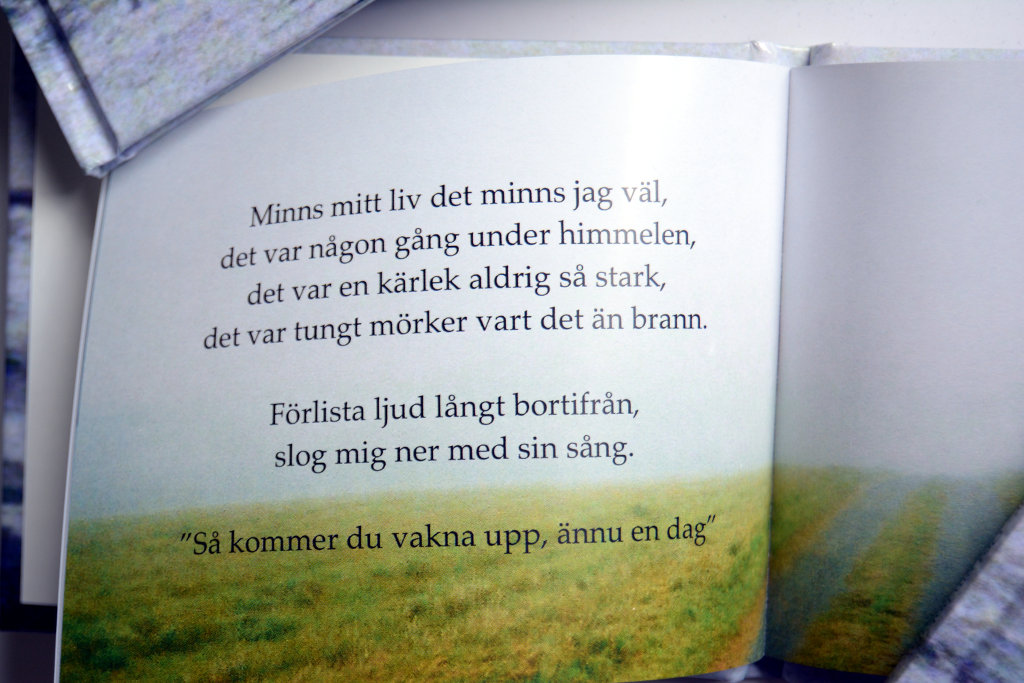 'Ord om bokstav' poetry book by Sanjin Đumišić.