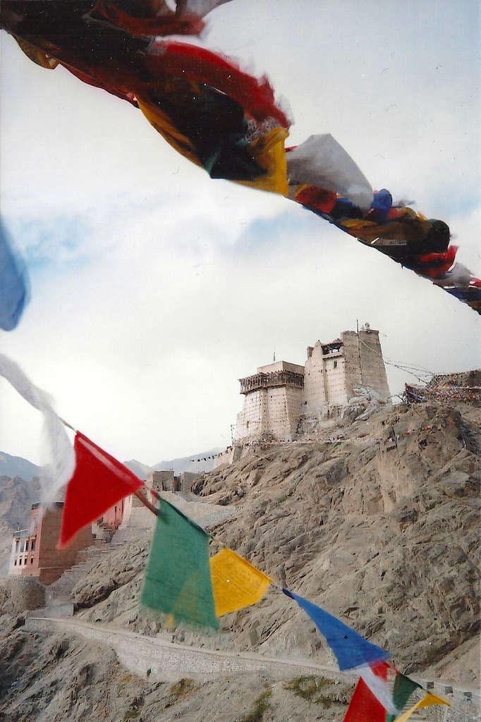 Namgyal Tsemo Gompa in Leh. Photo: Sanjin Đumišić.