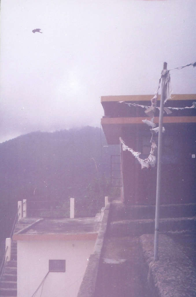 Rooftop in Dharamsala. Photo: Sanjin Đumišić.