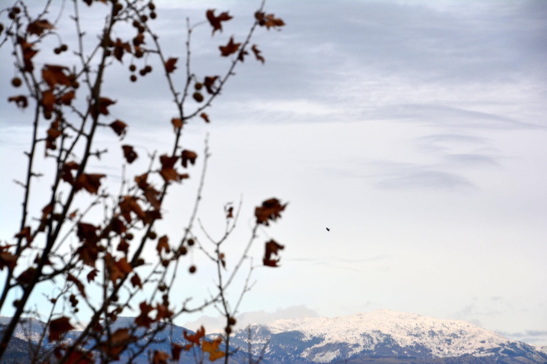 Late November in Mostar. Photo: Sanjin Đumišić.