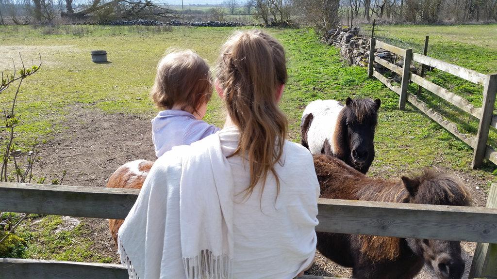 Florens and Lisa with small horses. Photo: Sanjin Đumišić.