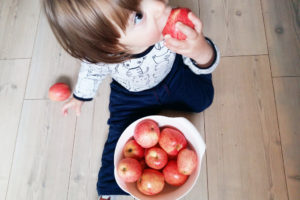Baby Florens eating delicious wild apples. Photo: Lisa Sinclair.