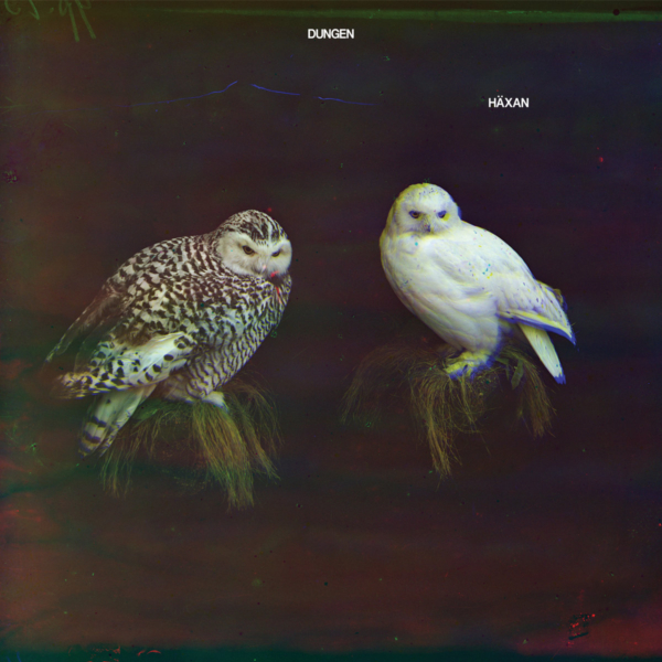 'Häxan' by Dungen