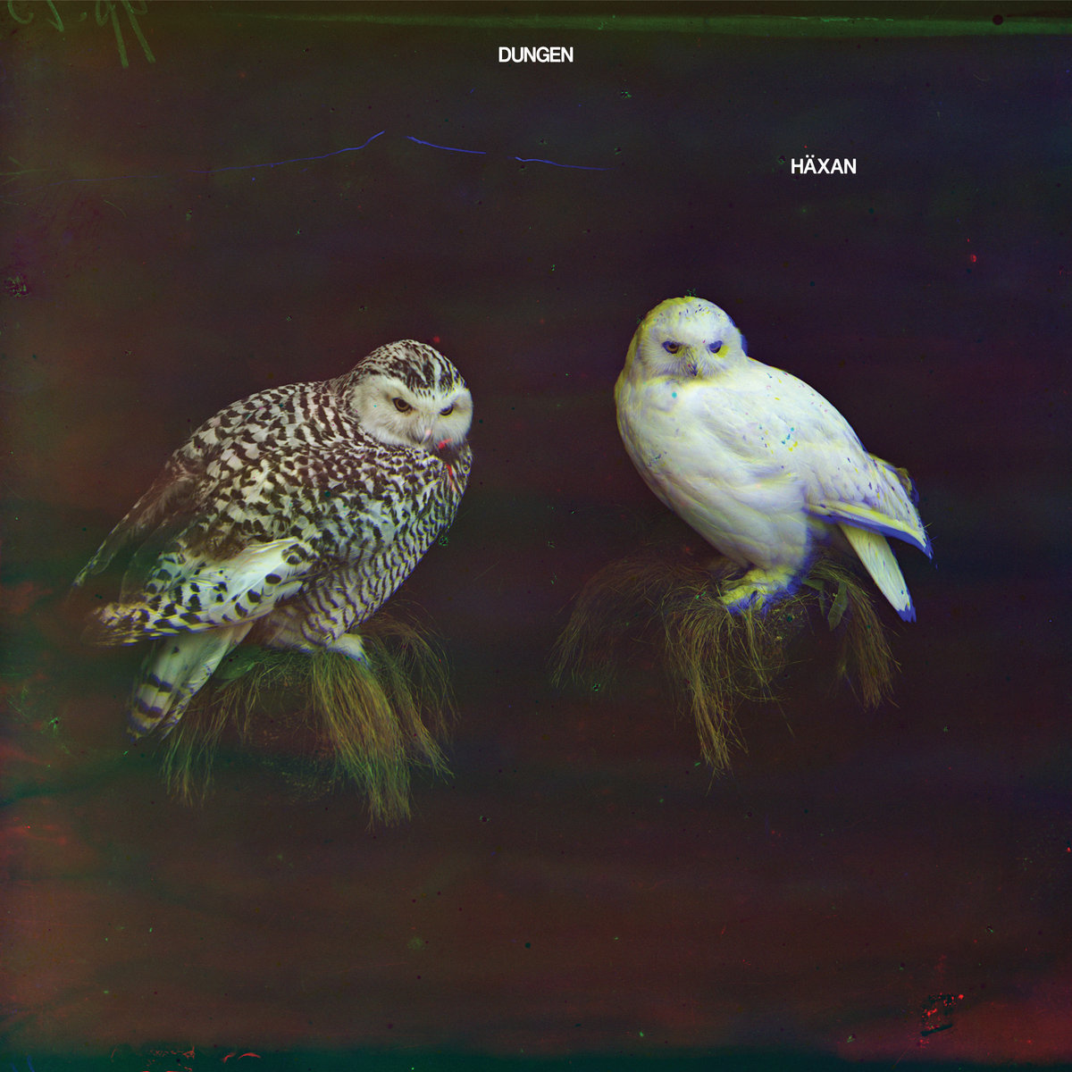 'Häxan' album cover by Dungen.