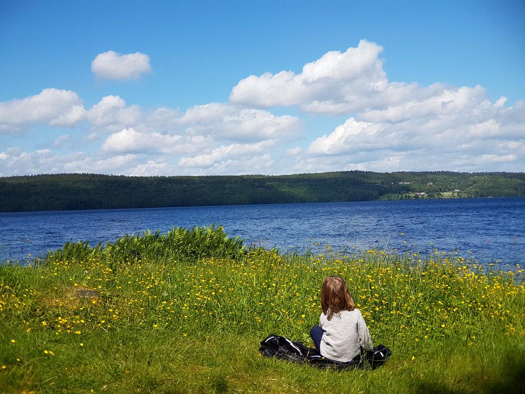 Florens, by a Swedish lake. Photo: Sanjin Đumišić.