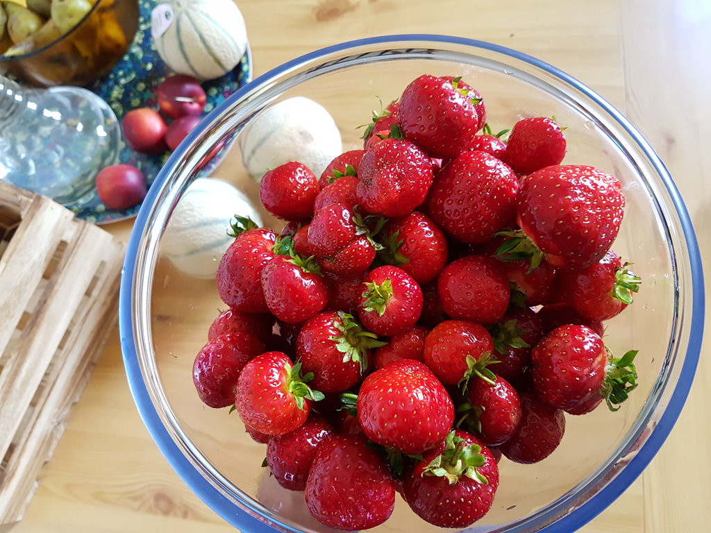 Swedish strawberries. Photo: Sanjin Đumišić.