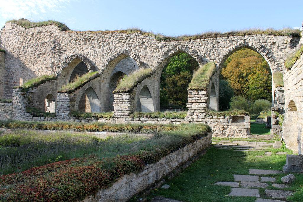 Alvastra Abbey Ruins. Photo: Sanjin Đumišić.