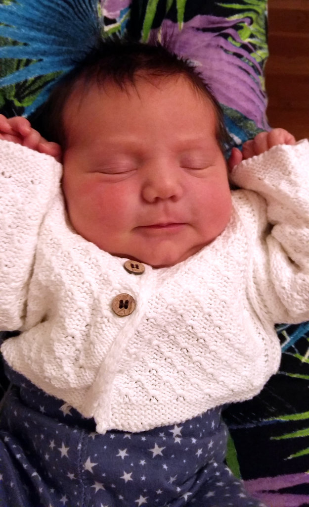 Newborn Aurelia. Photo: Lisa Sinclair.