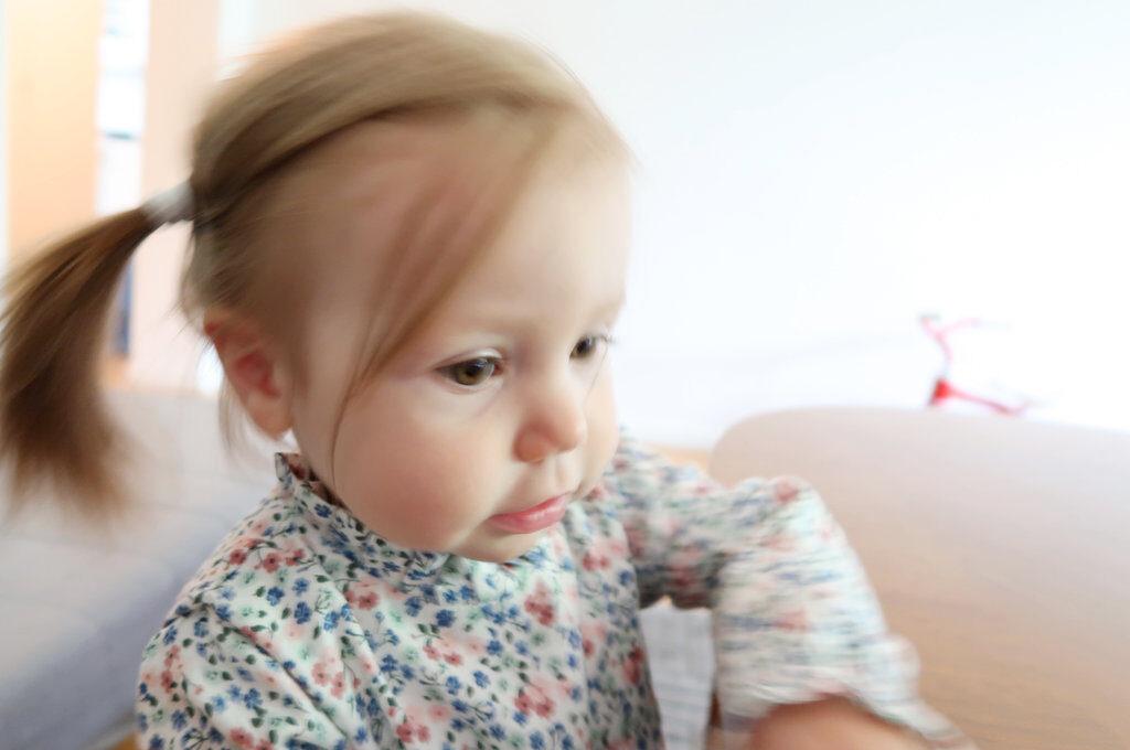Aurelia pondering. Photo: Sanjin Đumišić.