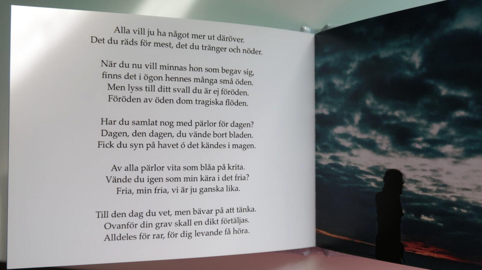 Min Kära I Det Fria, av Sanjin Đumišić.